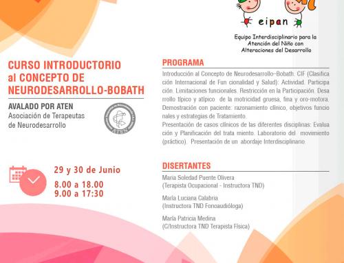 Curso Introductorio al Concepto de Neurodesarrollo-Bobath